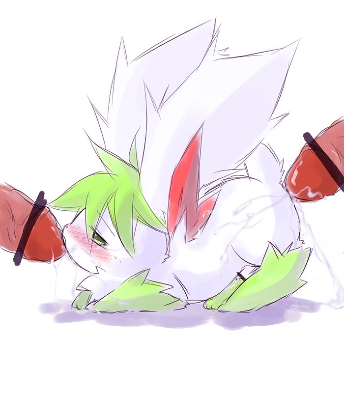 get how sky shaymin form to Male to female tf and pregnant tf